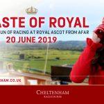 A Taste of Royal at Cheltenham Racecourse